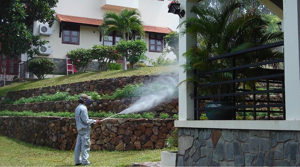 Công ty diệt muỗi